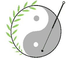 Experience On Acupuncture Therapy