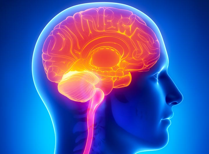 acupuncture benefits memory and brain in an alzheimer disease